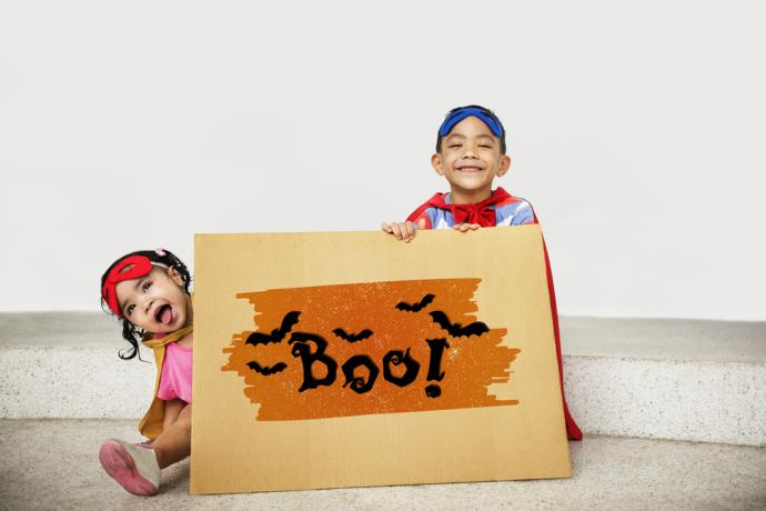 Many shoppers may have sticker shock when looking for their costumes and rush to find cheaper alternatives for their Halloween needs this year, but they should be extremely careful when browsing online.